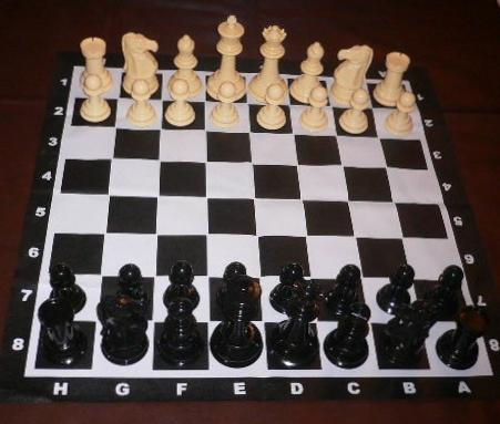 Garden Chess Set 206mm King and Vinyl Mat
